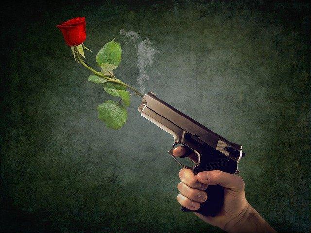 ピストルと銃口に刺さるバラ